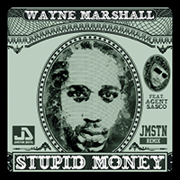 waynemarshallsasco-stupidmoney.jpg